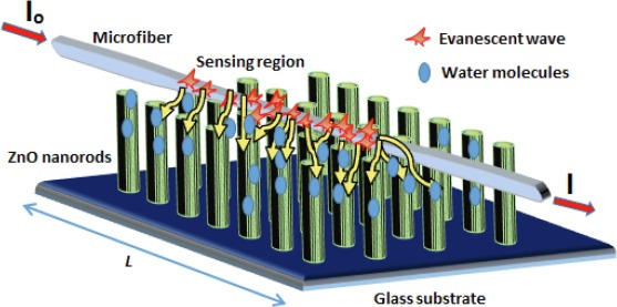 Optimization of sensing performance factor (γ) based on microfiber