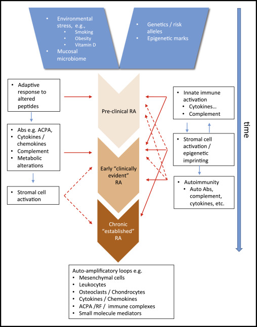rheumatoid arthritis pathogenesis pdf