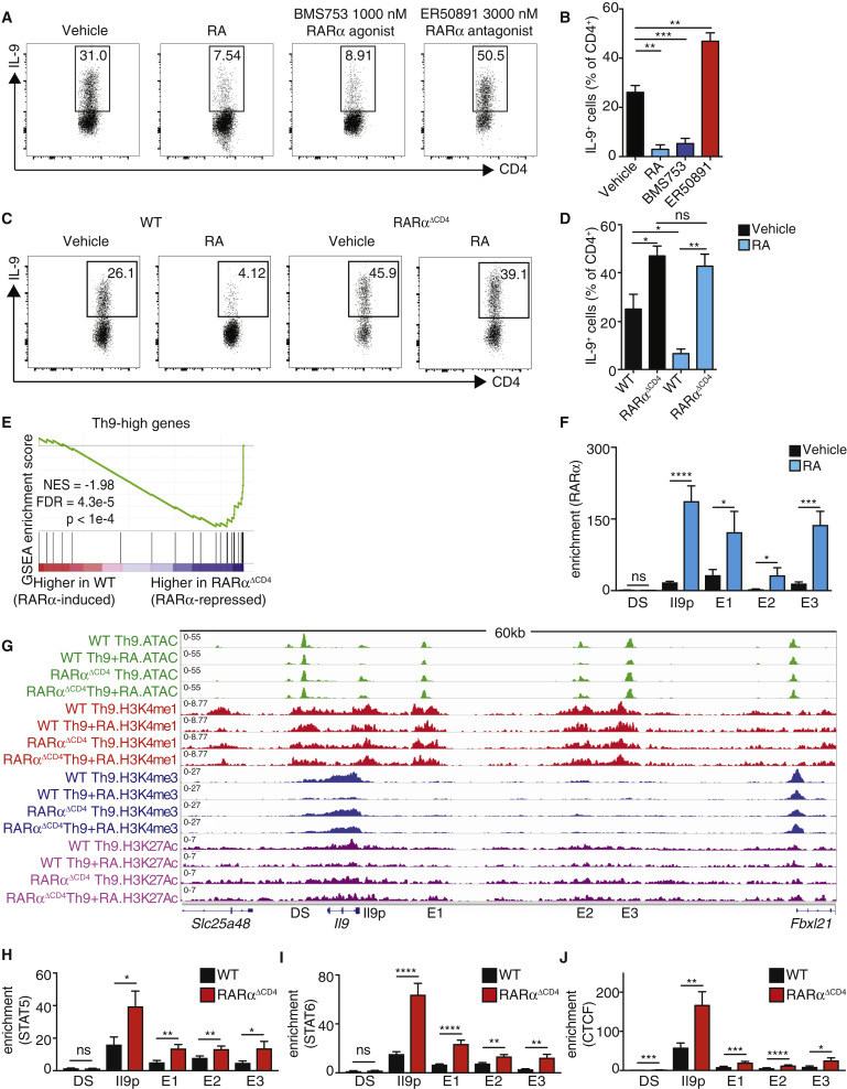 Retinoic Acid Receptor Alpha Represses a Th9 Transcriptional and