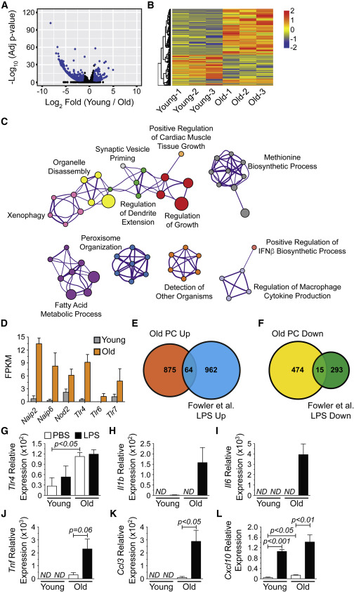 Plasma Cells Are Obligate Effectors of Enhanced Myelopoiesis in