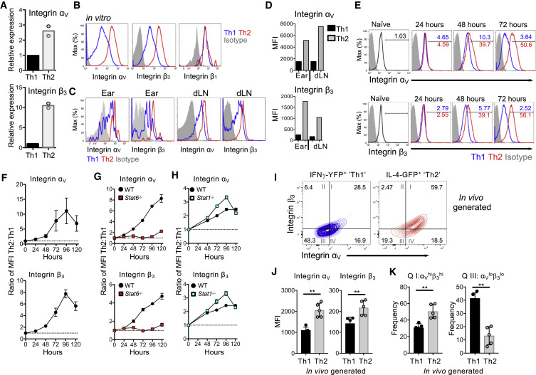 Programming of Distinct Chemokine-Dependent and -Independent