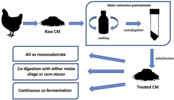 Pretreatment of poultry manure for efficient biogas