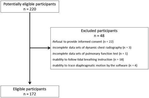 Time Resolved Quantitative Analysis Of The Diaphragms During Tidal