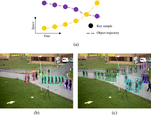 Online multi-object tracking via robust collaborative model and