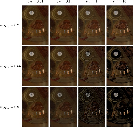 A bio-inspired synergistic virtual retina model for tone mapping