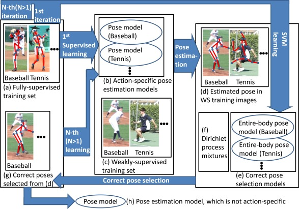 Semi- and weakly-supervised human pose estimation