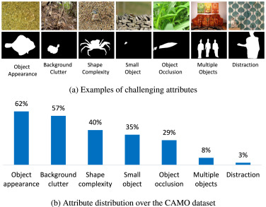 Anabranch network for camouflaged object segmentation