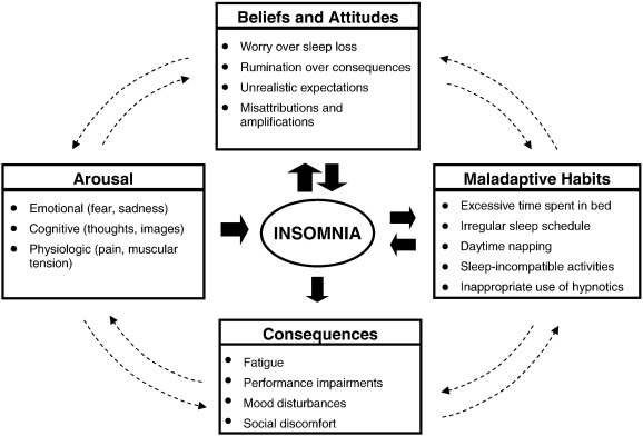 Cognitive Behavioral Therapy for Insomnia in Older Adults
