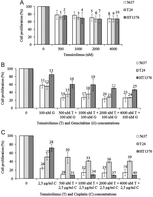 Temsirolimus Improves Cytotoxic Efficacy Of Cisplatin And Gemcitabine Against Urinary Bladder Cancer Cell Lines Sciencedirect