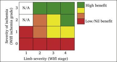 Global Vascular Guidelines on the Management of Chronic Limb