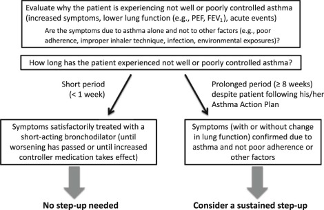 The pediatric asthma yardstick: Practical recommendations