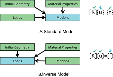 How computational models can help unlock biological systems 8 how modelling gave rise to inverse inference methods a in a traditional potts or finite element model an initial geometry is chosen the relevant fandeluxe Images