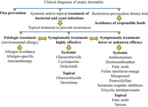 An update on the treatment of canine atopic dermatitis