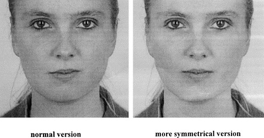 Facial symmetry and judgements of apparent health: Support