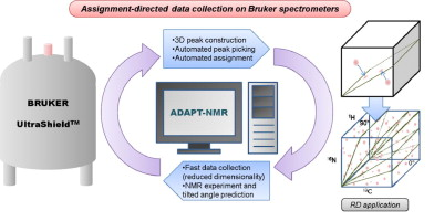 Fast Automated Protein Nmr Data Collection And Assignment By Adapt