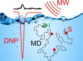 Liquid state DNP at high magnetic fields: Instrumentation