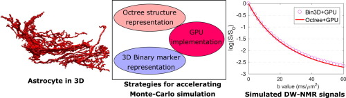 Efficient GPU-based Monte-Carlo simulation of diffusion in