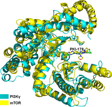 A structural insight into the inhibitory mechanism of an orally