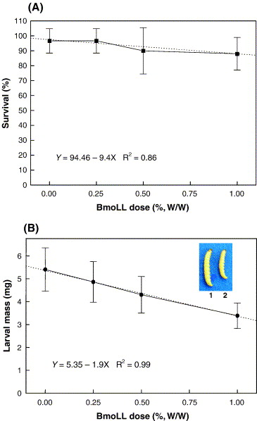 Insecticidal action of Bauhinia monandra leaf lectin (BmoLL) against