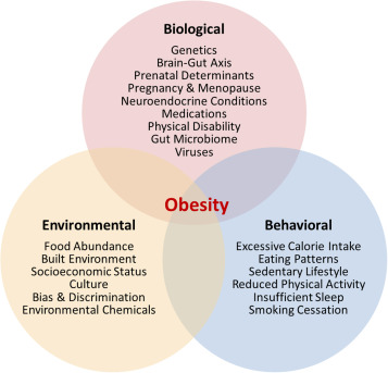 Current Paradigms In The Etiology Of Obesity Sciencedirect