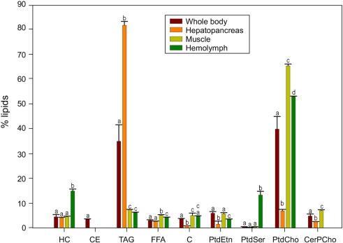 Analysis of lipid and fatty acid composition of three