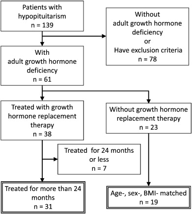 Long-term effects of growth hormone replacement therapy on
