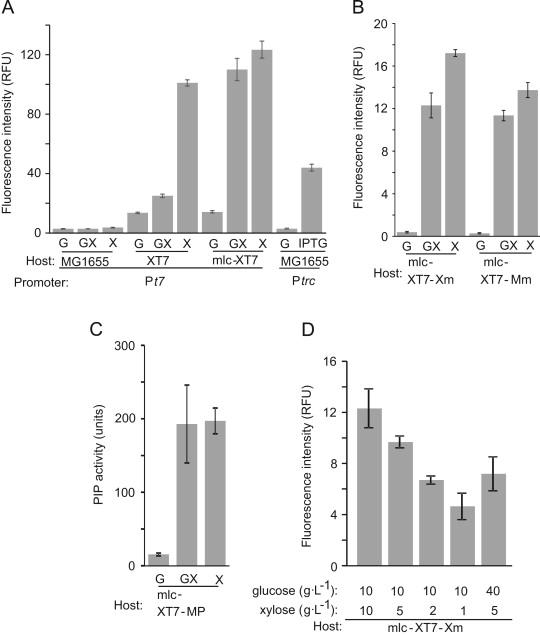 Establishment of a novel gene expression method, BICES