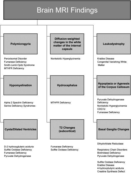 Metabolic and monogenic causes of seizures in neonates and young