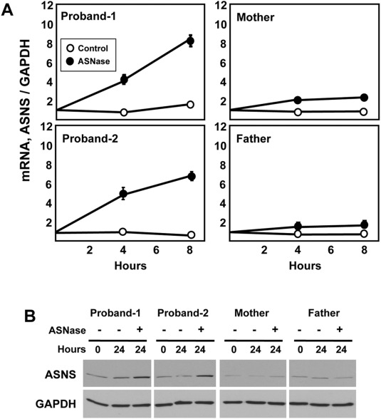 Characterization of a novel variant in siblings with