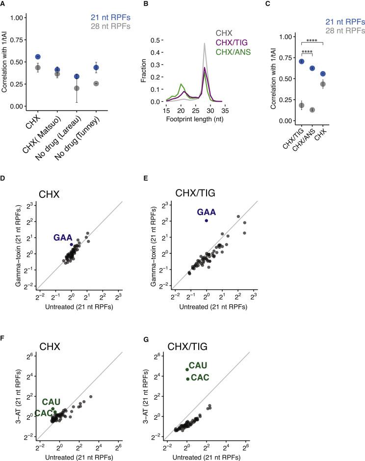 High-Resolution Ribosome Profiling Defines Discrete Ribosome
