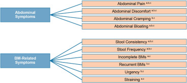 Development of the Diary for Irritable Bowel Syndrome