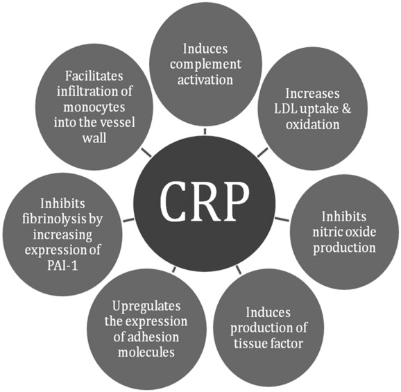 C-reactive protein, inflammation and coronary heart disease ...