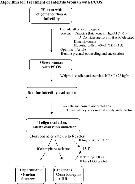 An algorithm for treatment of infertile women with polycystic ovary download high res image 464kb fandeluxe Images
