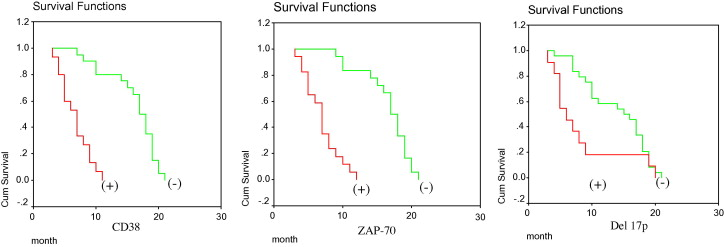 Prognostic significance of del 17p, ZAP-70 and CD38 as