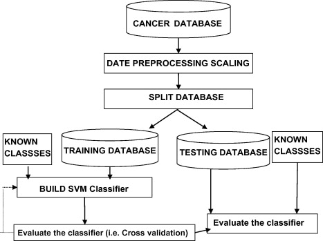 Support vector machine for diagnosis cancer disease: A