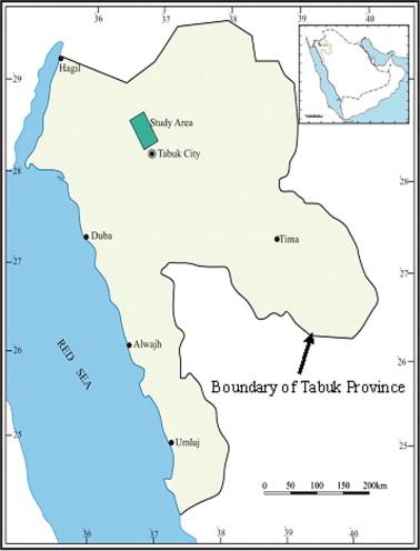 Monitoring of agricultural area trend in Tabuk region Saudi Arabia