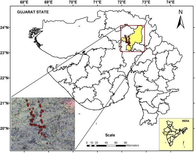 Evaluation of full-polarimetric parameters for vegetation