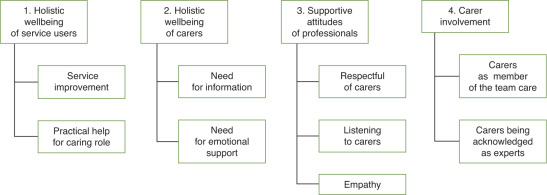 What does the literature suggest about what carers need from