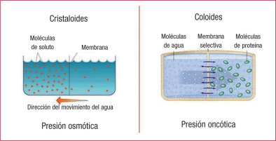 CRISTALOIDES VS COLOIDES EPUB