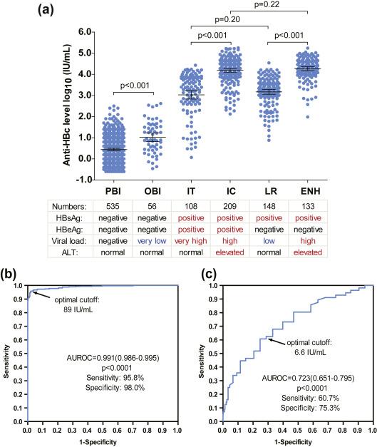 Quantitative hepatitis B core antibody levels in the natural