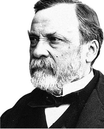 Louis Pasteur From Crystals Of Life To Vaccination Sciencedirect