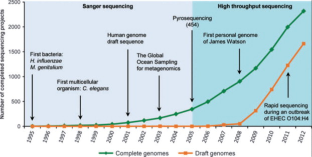 Its Genome Was Sequenced Last Year But >> Rapid Bacterial Genome Sequencing Methods And Applications In