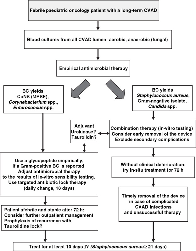 Diagnosis and treatment of catheter-related infections in paediatric