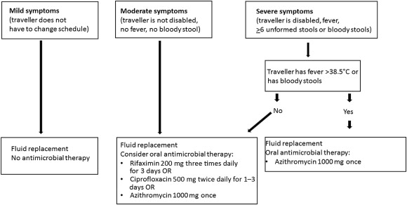 Therapy of acute gastroenteritis: role of antibiotics
