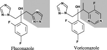 Voriconazole—a new therapeutic agent with an extended spectrum of