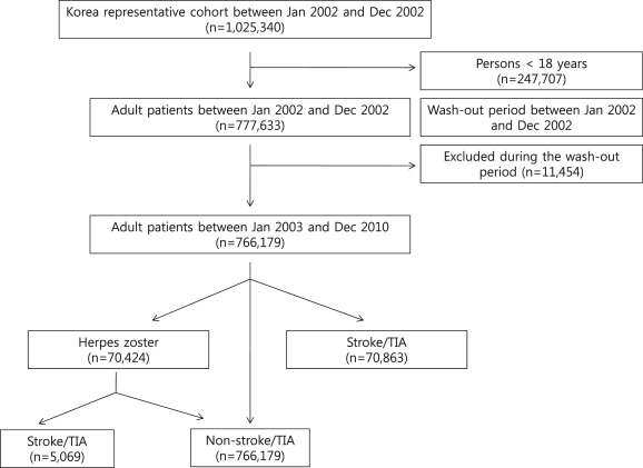 Risk of stroke and transient ischaemic attack after herpes zoster
