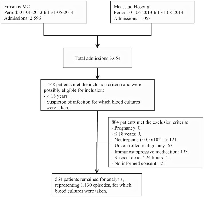 Procalcitonin to guide taking blood cultures in the intensive care