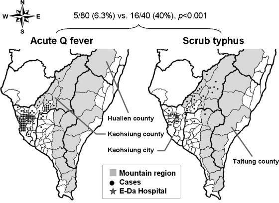 typhus fever