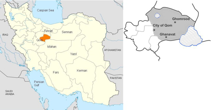 A newly emerged cutaneous leishmaniasis focus in central Iran