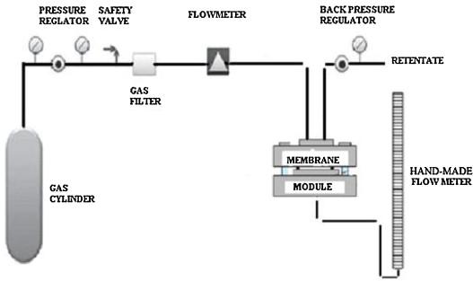 gas membrane diagram another wiring diagrams u2022 rh benpaterson co uk Serous Membrane Diagram Cell Membrane Diagram Labeled